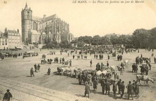 Le Mans - La Place des Jacobins un jour de Marché