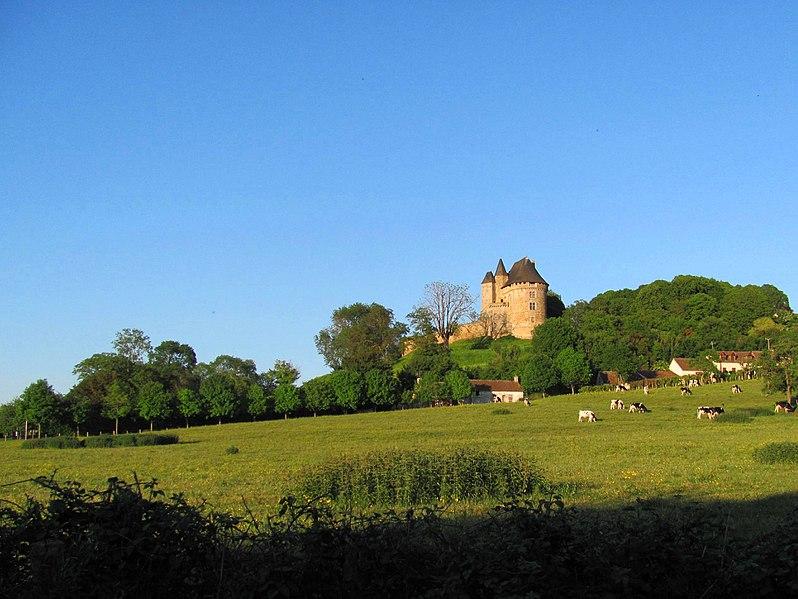Ballon - Ce château a été une forteresse très importante durant une grande partie de la période médiévale - Son aspect actuel est caractéristique de la fin du XVème siècle (Source Internet, Mv287)