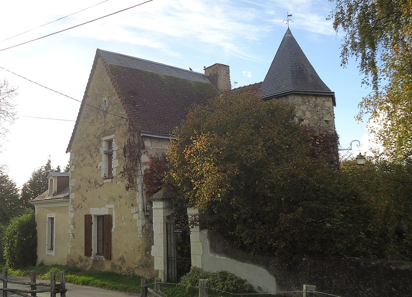 Mayet - Manoir des Viviers (Source Internet, Gregofhuest)