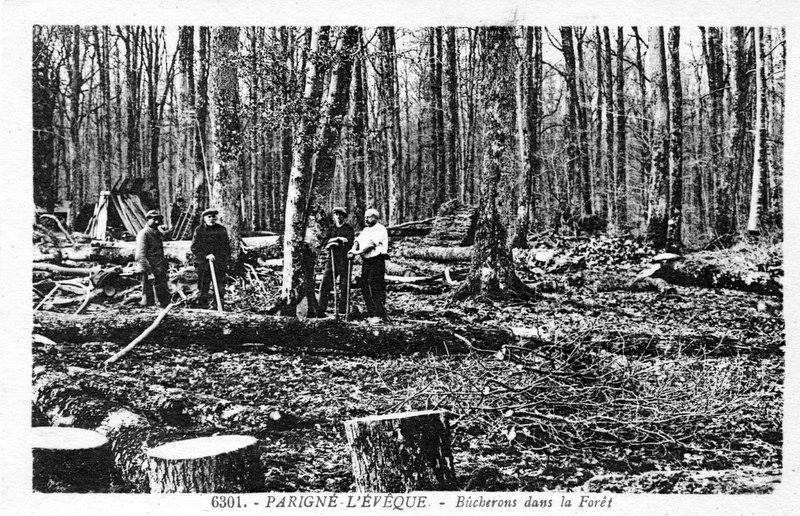Parigné l'Evêque - Au quotidien - Métiers - Bûcherons dans la Forêt