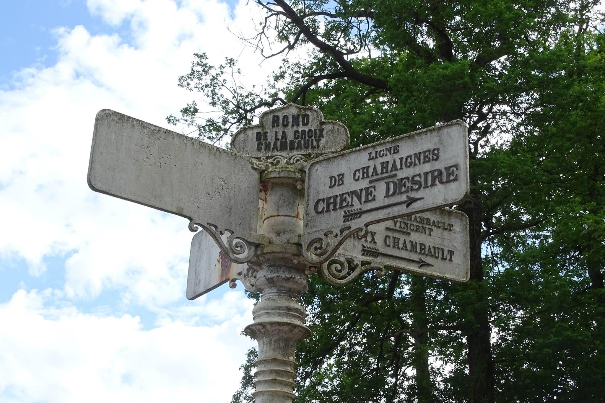 Forêt de Bercé - Plaque de cocher - Rond de la Croix Chambault - Ligne de Chahaignes - Chêne Désiré (Marie-Yvonne Mersanne)