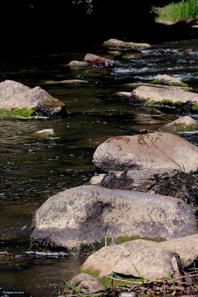 Saint Léonard des Bois - Le « Chapelet » sur la Sarthe - Ces grosses pierres permettaient de passer à pied sec (sauf en cas de chute) - Ce sont des systèmes de franchissement des rivières très anciens (Philippe Gondard)