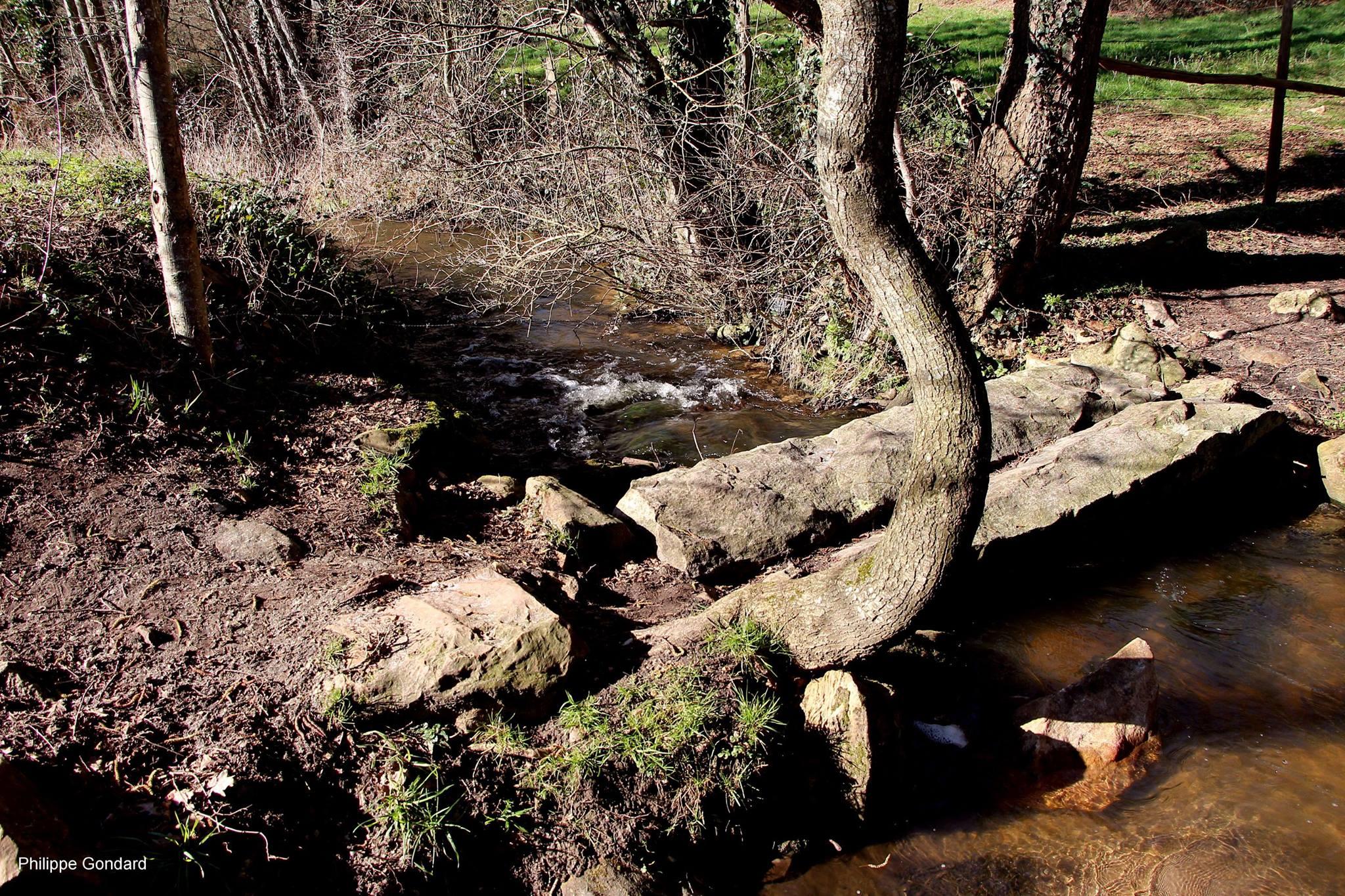 Volnay - Un pont de pierre sur la Hune - C'est un témoignage d'une technique très ancienne (Philippe Gondard)