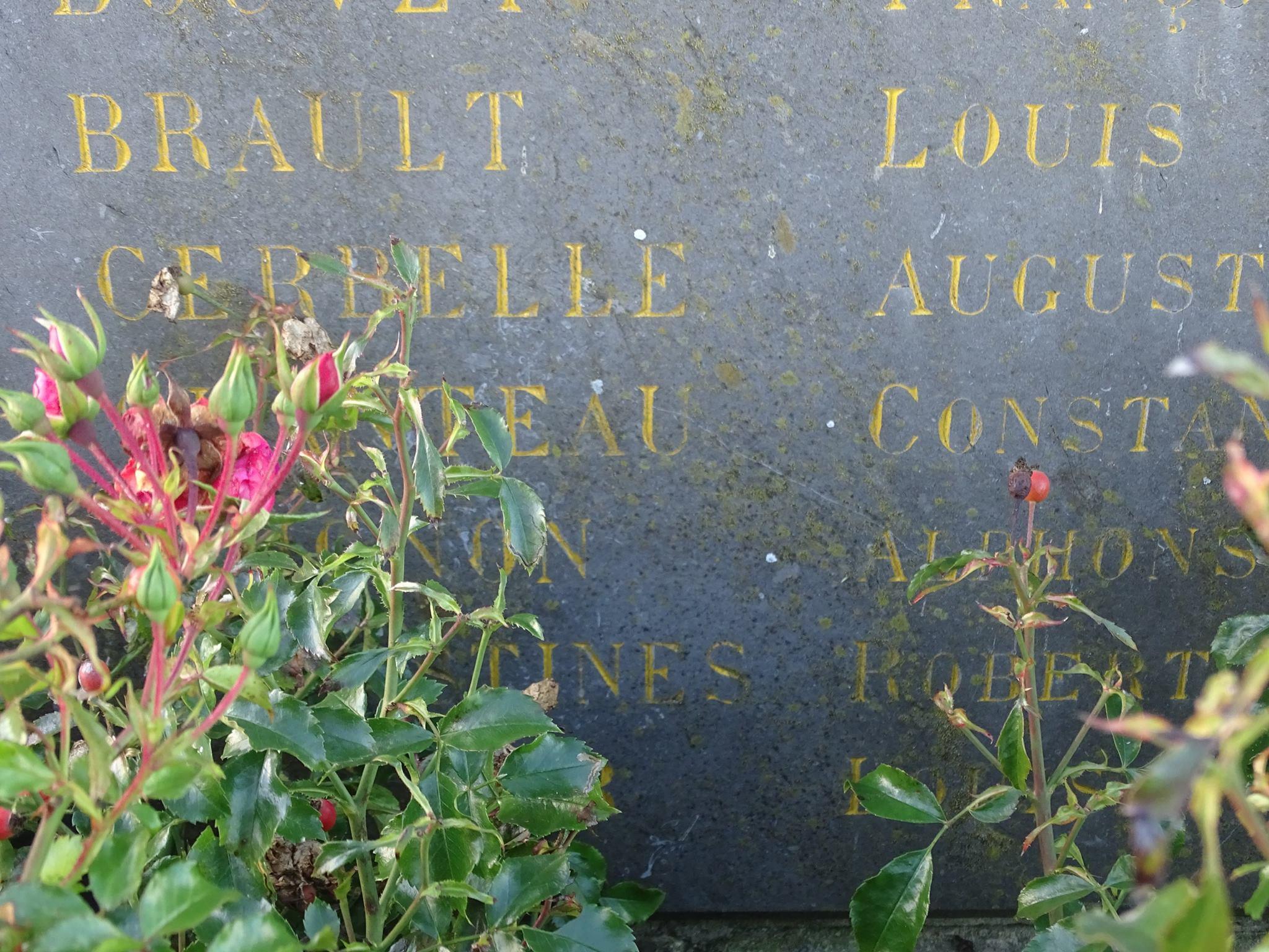 Pirmil - Monument commémoratif - Aux enfants de Pirmil morts au champ d'honneur 1914-1918 - Vue 03 (Marie-Yvonne Mersanne)